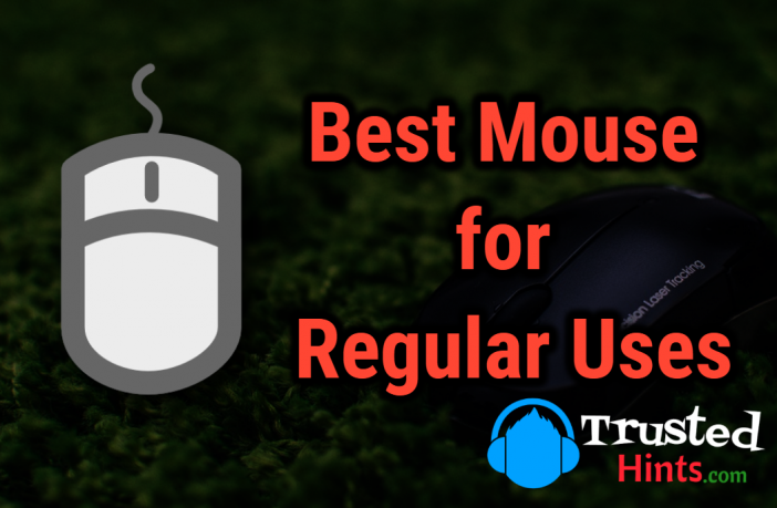 Best 8 Wireless Mouse for Regular Use
